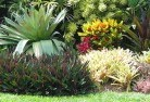Araluen NSW Tropical landscaping 9